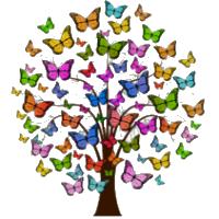 Butterfly Logo Trans